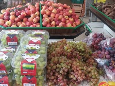 Du Binho Horti Fruti